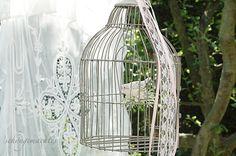 Fußboden Im Sommergarten ~ Besten sommergarten bilder auf balkon garten