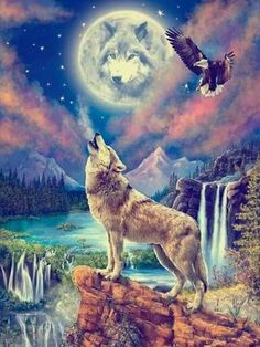 Beautiful Nature Pictures, Beautiful Wolves, Beautiful Nature Scenes, Animals Beautiful, Beautiful Eyes, Eagle Pictures, Wolf Pictures, Wolf Craft, Alpha Wolf