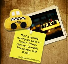 INSTA* Random Facts- Taxi