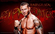 Free HD Desktop Wallpapers For Widescreen High Definition Mobile 35 WWE Superstars