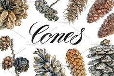 Cones by Watercolor life on @creativemarket