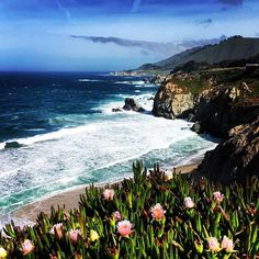 View from the Pacific Coast Highway in California near Big Sur. #pacificcoasthighway #california #usa #roadtrip #view #coastline #flowers #spring #beach #ocean #bluesky #iphonephoto #travel #travelphotography #nature #naturephotography #roadtripwithmylove #highway1 #bigsur #monterey #carmelbythesea #calocals - posted by Marije Jongsma https://www.instagram.com/marijejongsma - See more of Big Sur, CA at http://bigsurlocals.com