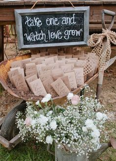Watch love grow! Living plants are a great favor that guests can take home and enjoy long after the wedding is over. Wedding Favors, Summer Wedding Ideas, Unique Wedding Favors http://www.colincowieweddings.com/inspiration-and-details/8-fun-summer-wedding-favor-ideas