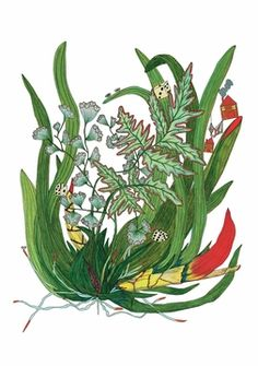 Botanicals Boxed Notecards (art by Pattie Lee Becker)