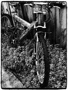 The Old Bike.........