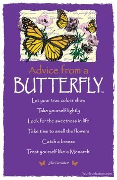 Advice from a Butterfly Frameable Art Card – Your True Nature, Inc. Dragonfly Quotes, Butterfly Quotes, Quotes About Butterflies, Butterfly Spirit Animal, Butterfly Meaning, Butterfly Outline, Butterfly House, White Butterfly, Advice Quotes