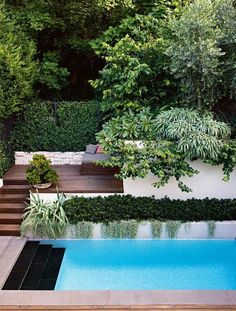 Pool Landscaping Ideas a Minimalist Swimming Pool on a Tiny Page? Check out ! S… Pool Landscaping Ideas a Minimalist Swimming Pool on a Tiny Page? Check out ! Surely it would be very nice to have a swimming pool at home. Swiming Pool, Best Swimming, Swimming Pools Backyard, Swimming Pool Designs, Cost Of Swimming Pool, Outdoor Pool, Outdoor Gardens, Indoor Outdoor, Moderne Pools