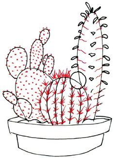 When drawing a cactus, add spines by drawing ridges and lines on each cactus.