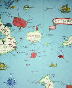 Galapagos Wallpaper A characterful wallpaper depicting a map of the Galapagos Islands printed in a casual hand drawn style in red, cream, green and coral on an azure background.