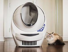In addition to a better smelling home, your cat will have a clean litter box every time.