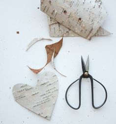 Inspiration: Draw a heart or some other shape (star) on a sheet of paper and cut it out. Trace the heart onto the back of the sheet of birch bark in a nice flat spot. Carefully cut it out with your scissors, being careful not to snap or bend the bark. Hot glue a piece of string for a natural gift tag or (Christmas) ornament.