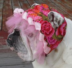 ENGLISH BULLDOG Reversible Hat Bold, Bright pink flowers, tulle, ribbon bully girl hat Olive green hat dog hat