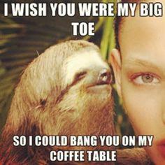 Dirty sloth!! Hahha