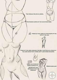 Exceptional Drawing The Human Figure Ideas. Staggering Drawing The Human Figure Ideas. Human Figure Drawing, Figure Drawing Reference, Art Reference Poses, Anatomy Reference, Life Drawing, Female Reference, Figure Drawing Tutorial, Drawing Drawing, Drawing Muscles