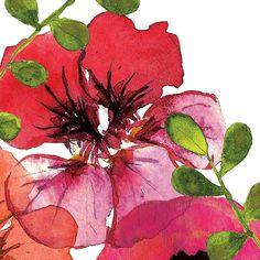 Tammy Apple Vibrant Floral III