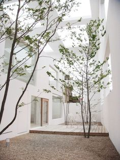 Ideas for house beautiful exterior courtyards Interior Garden, Interior Exterior, Home Interior Design, Exterior Design, Interior Architecture, Minimal Architecture, Architecture Courtyard, Tree House Interior, Modern Japanese Architecture