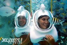 Sea Trek Xcaret | Las mejores actividades de Cancún y Riviera Maya
