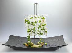 "Heinz Beck – ""Vegetarian"" Michelin Star, Michelin Food, Modernist Cuisine, Sauce Tomate, Food Styling, Plats Cuisinés, Food Plating, Fancy Food Presentation, Culinary Arts"