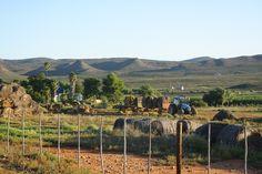 Route 62 -- Little Karoo