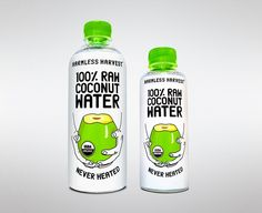 9 Best Coconut Water Brands, According to Experts