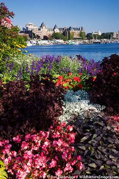 * The city of Victoria and the Inner Harbour from Songhees Point, Victoria, Vancouver Island, British Columbia, Canada
