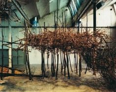 branches installation Bloom Magazine