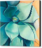 Shadow Dance 4 Canvas Print by Athena Mantle. All canvas prints are professionally printed, assembled, and shipped within 3 - 4 business days and delivered ready-to-hang on your wall. Choose from multiple print sizes, border colors, and canvas materials. Oil On Canvas, Canvas Art, Canvas Prints, Oil Painting Flowers, Succulents Painting, Dance 4, Cactus, Still Life Art, Watercolor Sketch