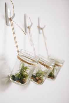 DIY Hanging Mason Jar Planter with Air Plants - Oh So Very Pretty | A few of our favourite little things