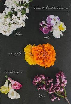 New Spring Bridal Shower Food Edible Flowers Ideas Personal Bridal Showers, Elegant Bridal Shower, Edible Flowers, Edible Plants, Wedding Flowers, Green Wedding, Boho Wedding, Wedding Hair, Wedding Dress
