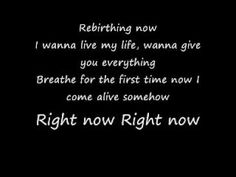 Skillet - Rebirthing lyrics