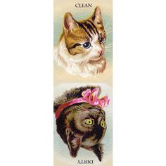 Cat Winks from Vintage Trade Card Clean Dirty Dishwasher Magnet