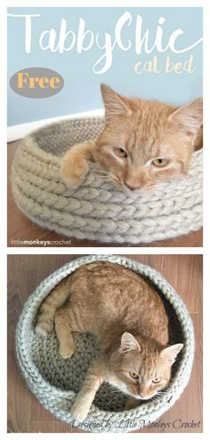 Crochet Beanie Design Cat Bed Free Crochet Pattern - The Cat Bed Free Crochet Pattern is an absolute must-have for anybody who has a feline member of their family. It is entirely customizable. Crochet Basket Pattern, Crochet Beanie Pattern, Baby Blanket Crochet, Crochet Baby, Crochet Patterns, Crochet Cat Beds, Crochet Baskets, Chrochet, Knit Or Crochet