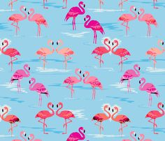 flamingos love aqua fabric by coggon_(roz_robinson) on Spoonflower - custom fabric