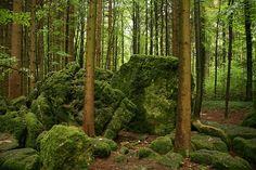 Found: GCJ6W4 - Karins Druidenhain Cache