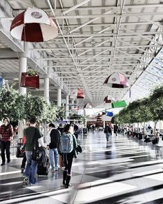 The Atrium a.k.a. Food Court at the airport. // During my connecting flight to San Diego I sat on one of the rocking chairs (on the side) to people-watch but ended up having a conversation with a lovely old lady from Buffalo. #FlashbackFriday