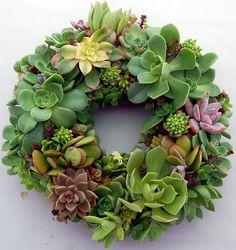 """Succulent Wreath Round Garden 9"""""""