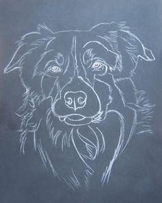 Blog du peintre animalier Cindy Barillet : Portraits d'animaux: Portrait de Border collie (pastels)