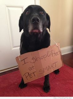 I shoplifted at Petsmart - http://feedingthe.net/i-shoplifted-at-petsmart/