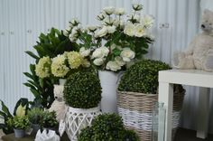 Floral Wreath, Exterior, Wreaths, Plants, Home Decor, Floral Crown, Decoration Home, Door Wreaths, Room Decor