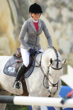 grey horse burgundy saddle pad - Google Search