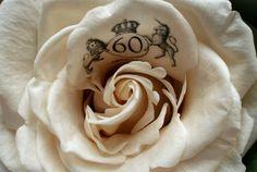 Queen's Diamond Jubilee 2012 Rose Keepsake