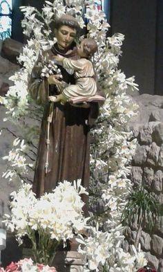 Oracion A San Antonio, Padua Italy, Religious Images, Statue, Rose, Saints, Christ, Prayers, San Antonio