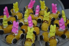 Spice Up your Life: Bunny Cakes