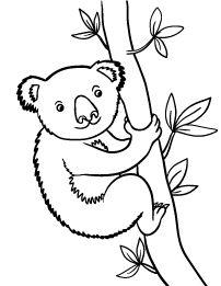 K Is For Koala Coloring Page koala bear coloring page more ida s koalad ida s koalad coloring pages ...