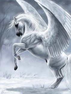 Pegasus - though considered Roman, these creatures were from Greek mythology; sometimes they had wings of feathers, and other times wings of skin or angels. Magical Creatures, Fantasy Creatures, Greek Mythical Creatures, Winged Horse, Greek And Roman Mythology, Unicorn Art, Mythological Creatures, Gods And Goddesses, Horse Art