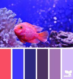 Черпаем вдохновение цветом в мире рыб. Часть 5 - Ярмарка Мастеров - ручная работа, handmade
