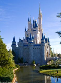 Cinderella Castle, Walt Disney World (Lake Buena Vista, FL)