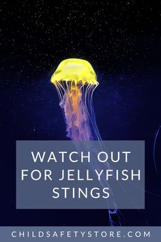 When you hit the beach, there are plenty of dangers to avoid. Beyond riptides and cold water shock, jellyfish stings can be a major hazard for swimmers. How Likely is a Jellyfish Attack? Find out by clicking the Jellyfish picture! Diy Pool Fence, Jellyfish Pictures, Summer Safety Tips, Jellyfish Sting, Swimming Pool Enclosures, Water Safety, Swimmers, Posts, Cold