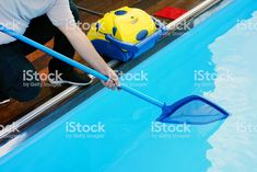 #automatic_pool_cleaners_reviews #pool_cleaners  #automatic_pool_cleaners #automatic_pool_cleaners_near_me #automatic_pool_cleaners_on_sale #automatic_pool_cleaners_amazon #automatic_pool_cleaners_walmart #automatic_pool_cleaners_above_ground #automatic_pool_cleaners_at_walmart #automatic_pool_cleaners_adelaide #automatic_pool_cleaners_costco #automatic_pool_cleaner_canada #automatic_pool_cleaners_for_sale #automatic_pool_cleaner_for_leaves #automatic_pool_cleaners_kits #automatic_pool_cleaners Best Automatic Pool Cleaner, Pool Cleaning, Costco, Walmart, Canada, Leaves, Amazon, Amazons, Riding Habit