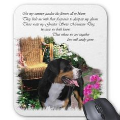 Greater Swiss Mountain Dog Art Gifts Mouse Pads